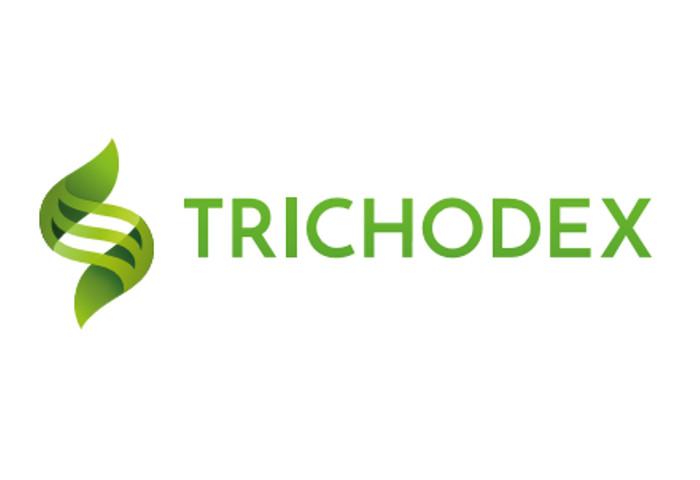 BoxDigital empresa encargada de la creación del vídeo corporativo de Trichodex