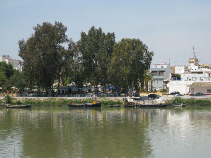 BOXDIGITAL elabora el Plan Estratégico para el Ayto de Coria del Río